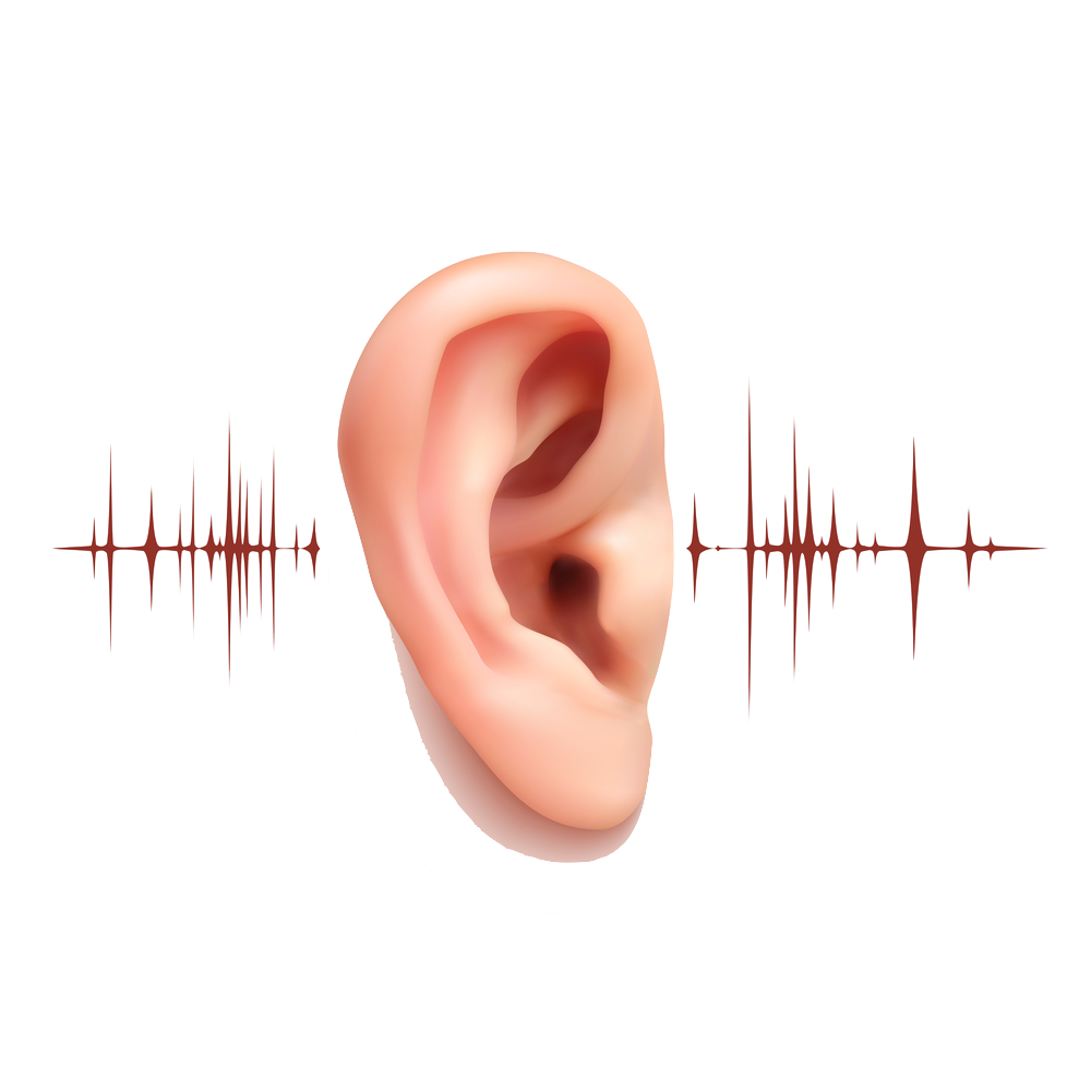 ear hearing sounds